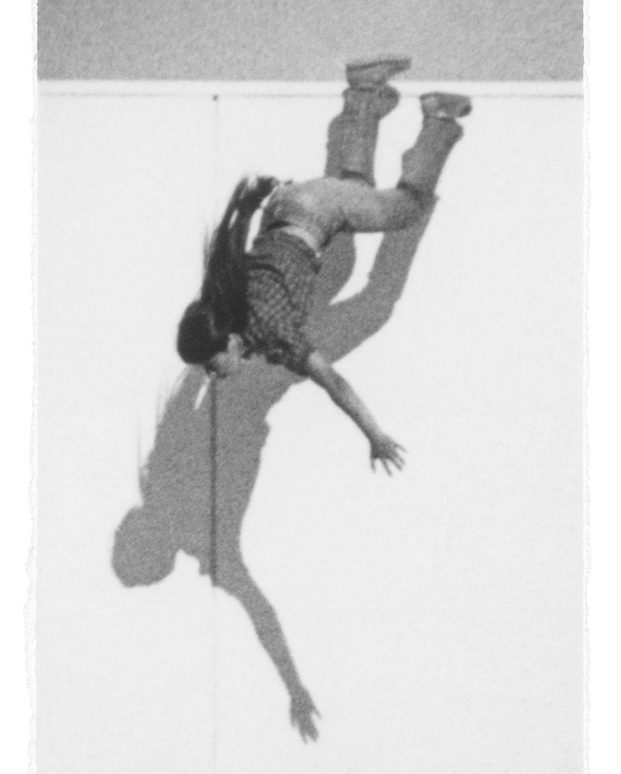 Sarah Charlesworth, Pairing Picture to its Essence