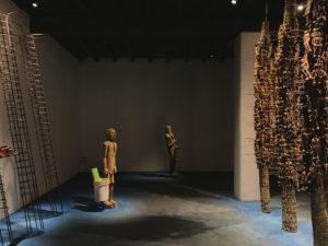 Vinu VV at Kochi Biennale